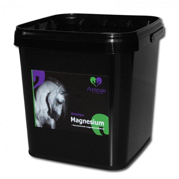 Amequ Magnesium til Heste 3 kg